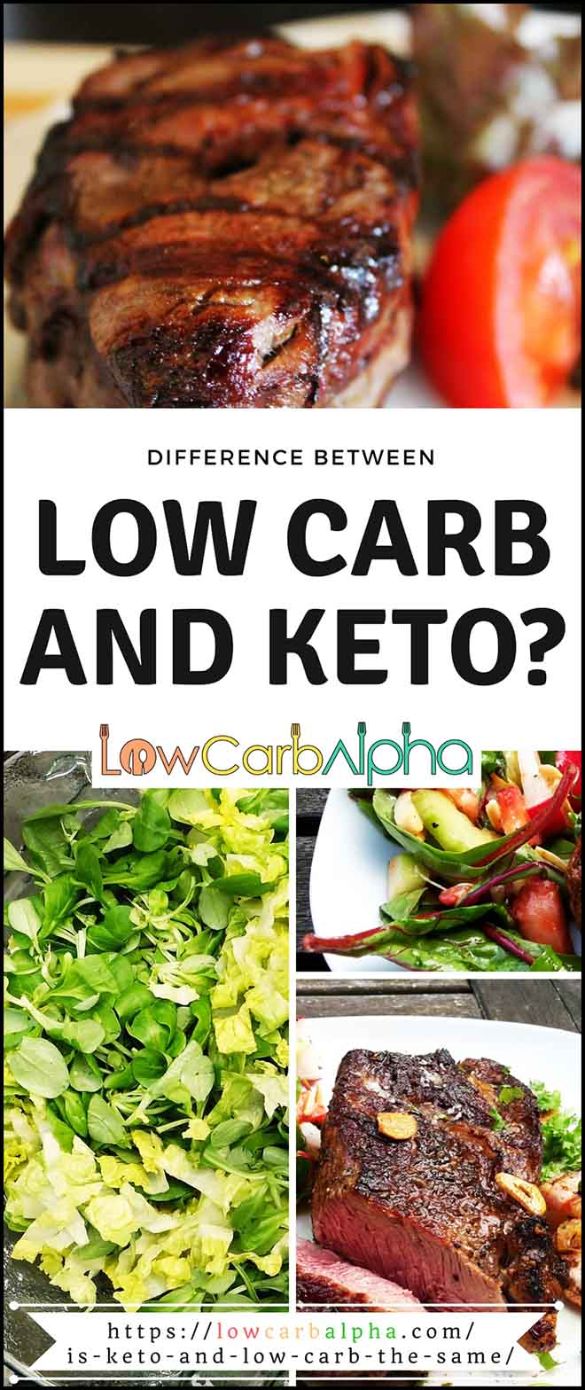 Difference between Keto vs Low carb #lowcarb #keto #LCHF #lowcarbalpha