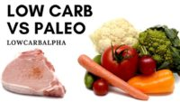Paleo vs. Low Carb Which Diet is Right for You?
