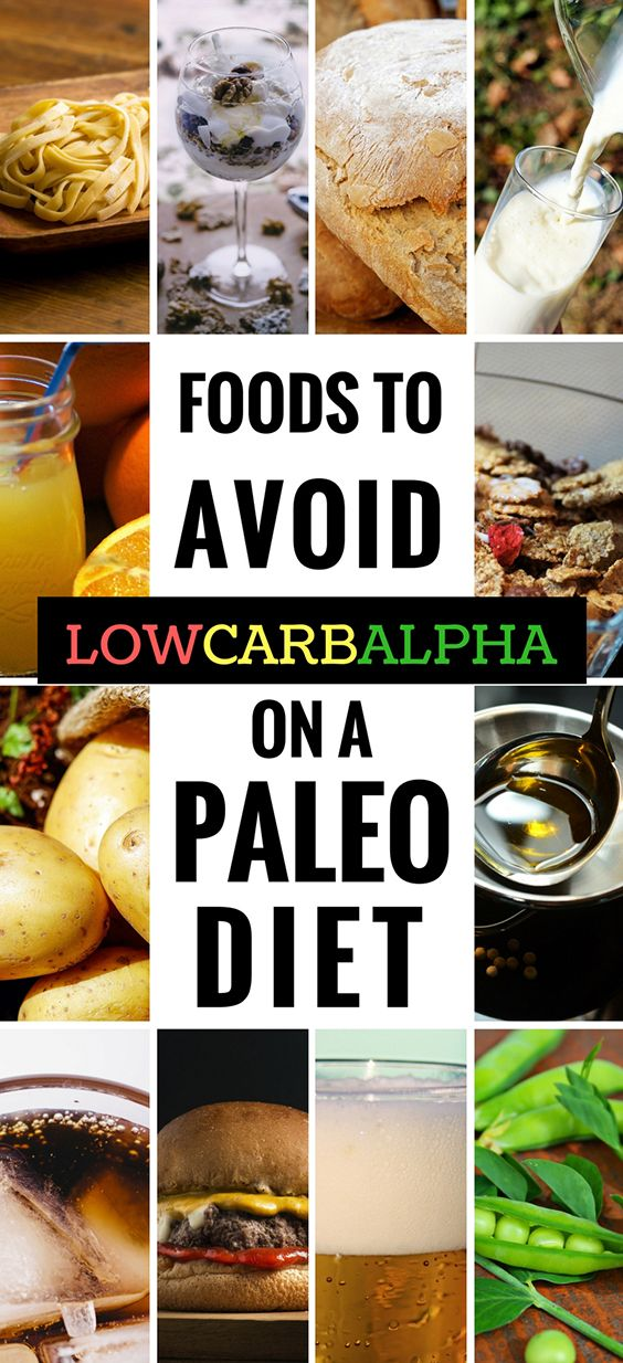 Foods to avoid on a Paleo diet. What To Eat and Avoid #paleo #healthyliving #nutrition #lowcarbalpha